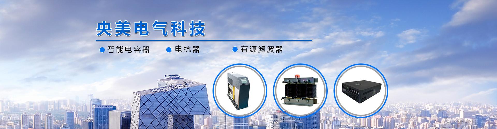 智能电力电容器
